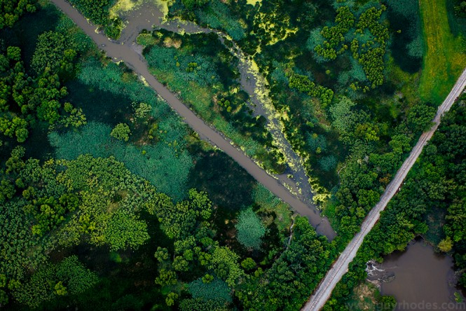 Trees, green foliage, and railroad track aerial.